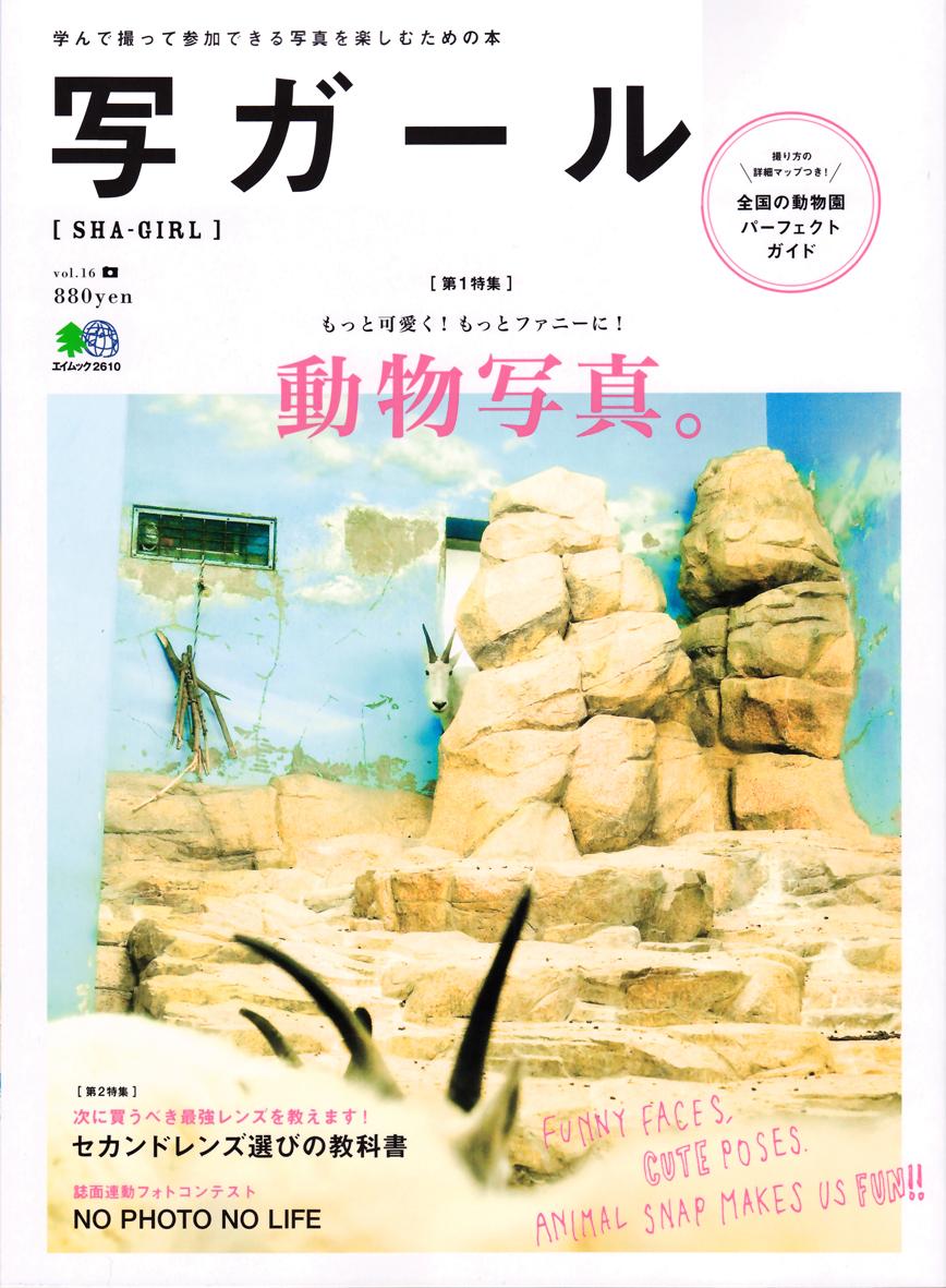 写ガール vol.16(エイ出版社)